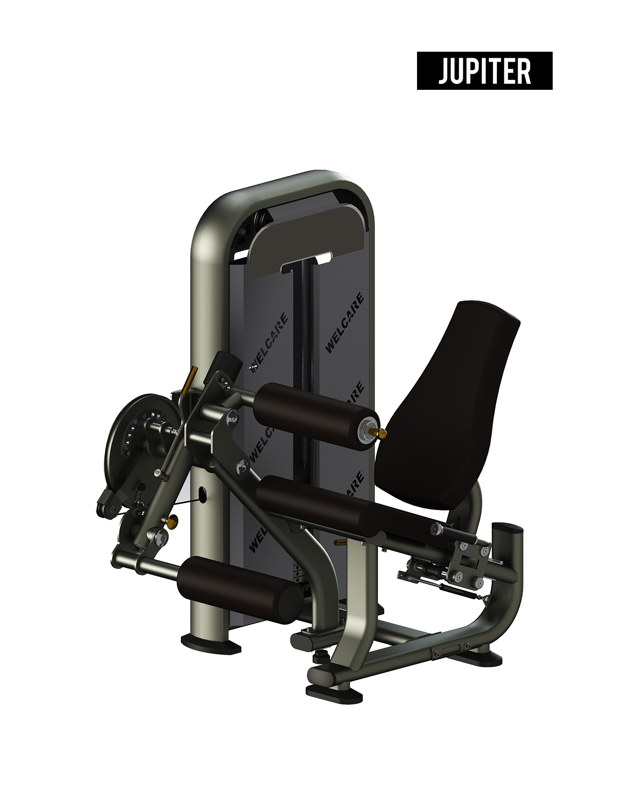 JL8923 SEATED LEG EXTENSION/ LEG CURL