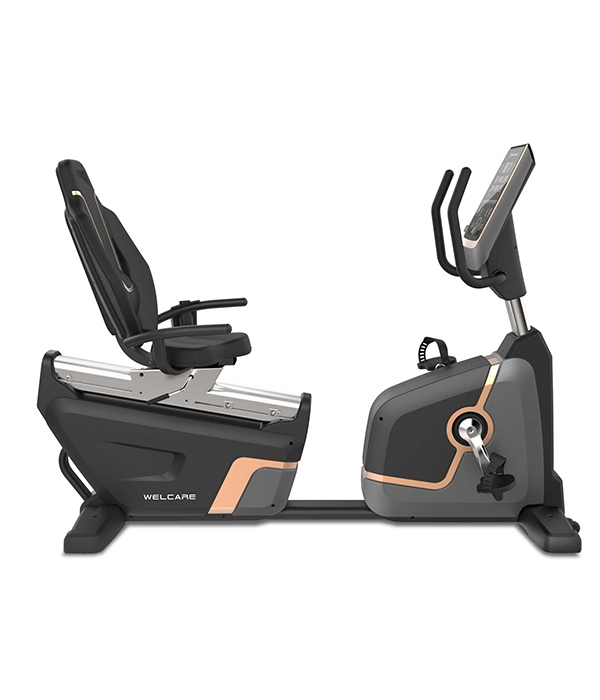 880RB – RECUMBENT BIKE