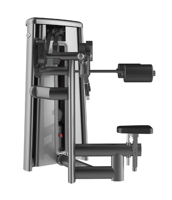 G3015 DELTOID RAISE MACHINE