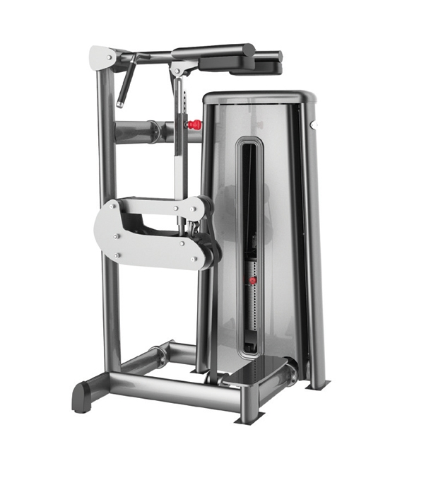 G3018 STANDING CALF MACHINE